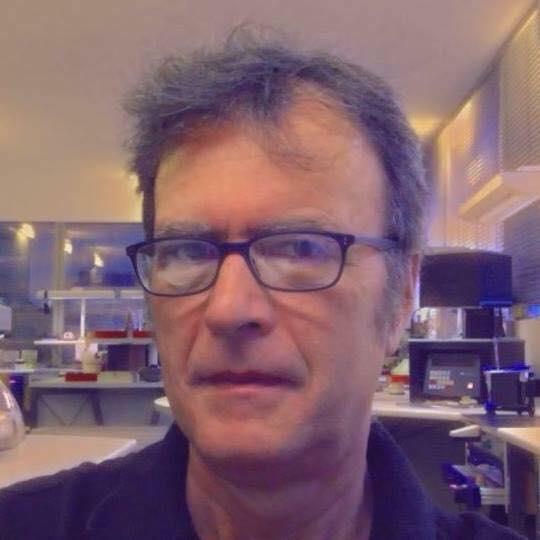 ODT. Dario Viera